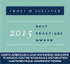 Frost & Sullivan's 2015 Customer Value Leadership Award