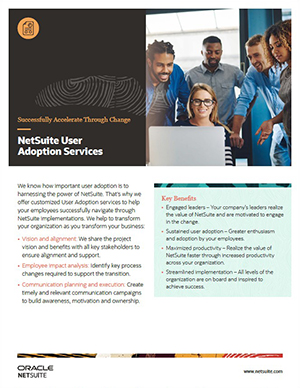 NetSuite User Adoption Services